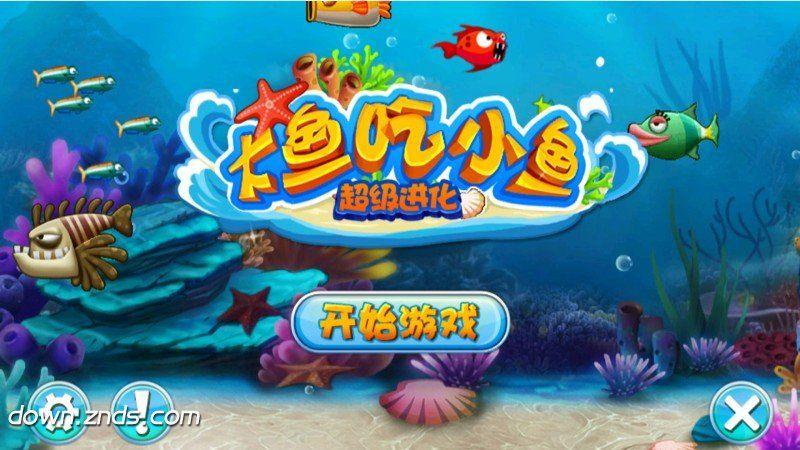 大鱼吃小鱼TV版