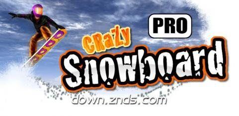 疯狂滑雪专业版TV版